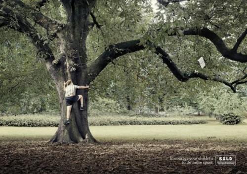 BOLD: Tree