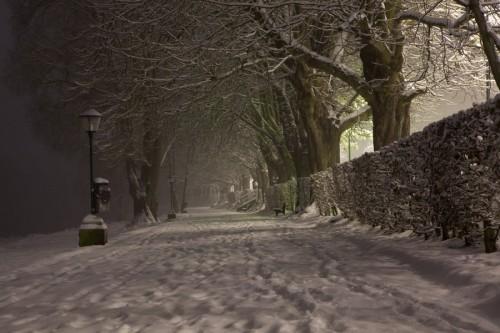 Fantastic Winter Night Picture