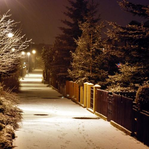 Winter Night Photography