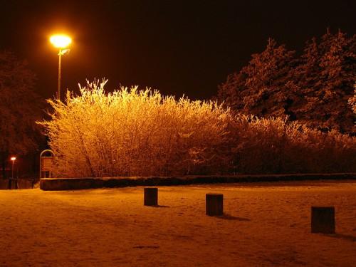 Winter Night in Brno