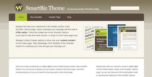 SmartBiz Theme