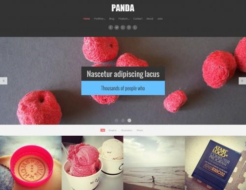 Panda Responsive Portfolio, Magazine Theme