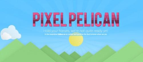 Pixel Pelican