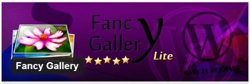 Fancy Gallery