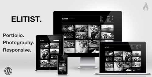 Elitist - Portfolio WP Theme