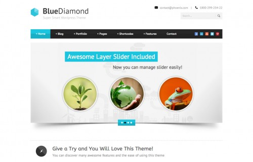 Blue Diamond - Responsive Corporate Theme