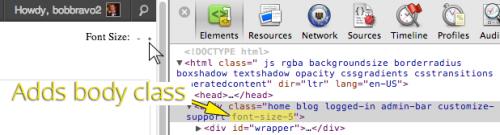 WordPress Font Size
