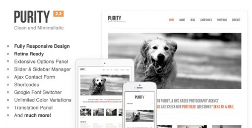 Purity: Responsive, Clean, Minimal Theme