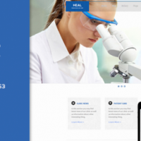 HEAL-Responsive-Medical-WP-Theme-500x254