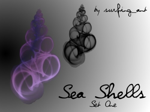 11 Free Seashell Brushes To Download