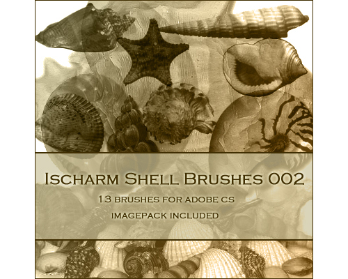 13 Free Ischarm Shell Brushes