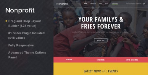 Nonprofit - NGO and Charity WordPress Theme