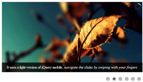 Camera - A Free jQuery Slideshow